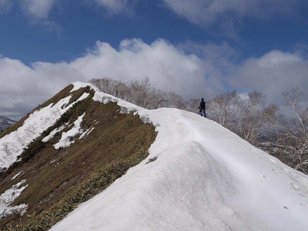 白老3山、4月19日-南白老岳編-_f0138096_1124222.jpg