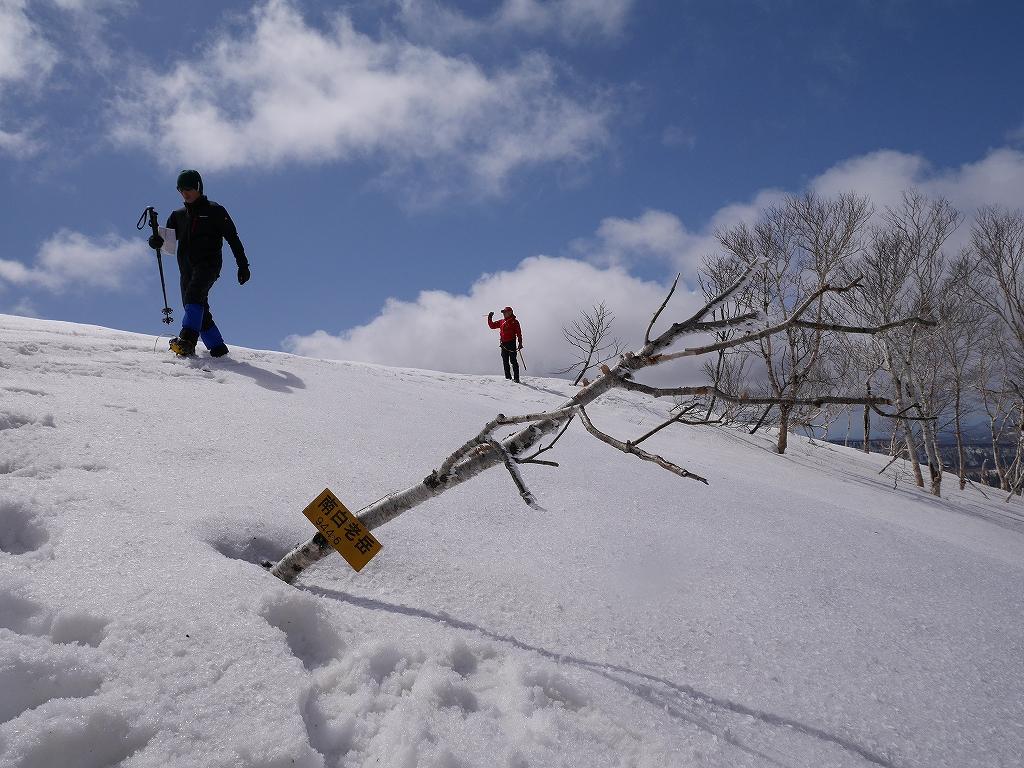 白老3山、4月19日-南白老岳編-_f0138096_11243036.jpg