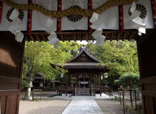 新緑が始まった 梨の木神社_e0048413_99279.jpg