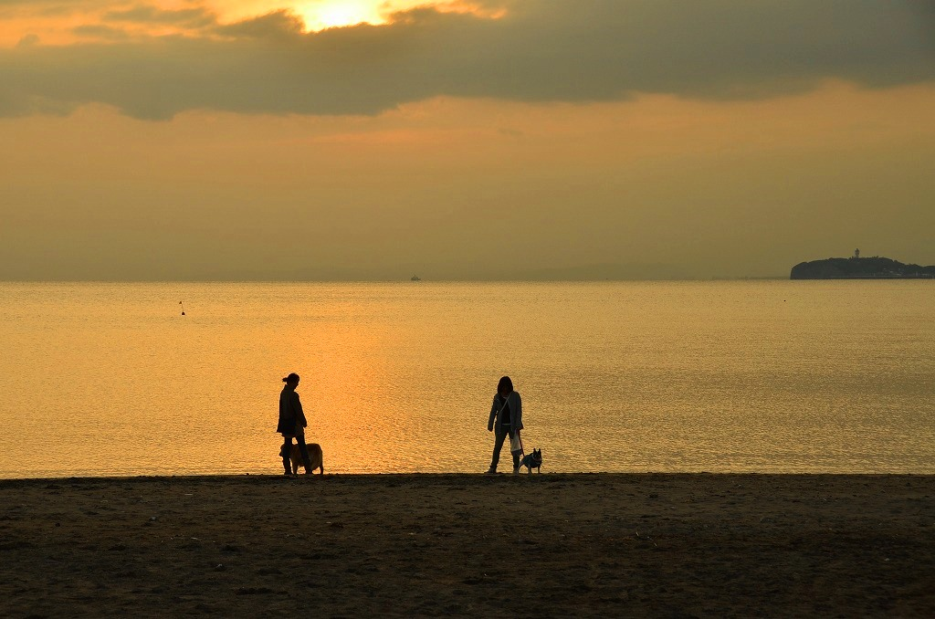 海辺のシルエット_d0065116_20273264.jpg