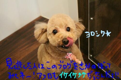 最高♪_b0130018_14101789.jpg