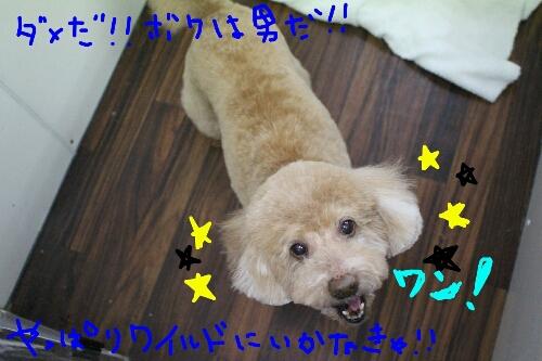 最高♪_b0130018_14133190.jpg