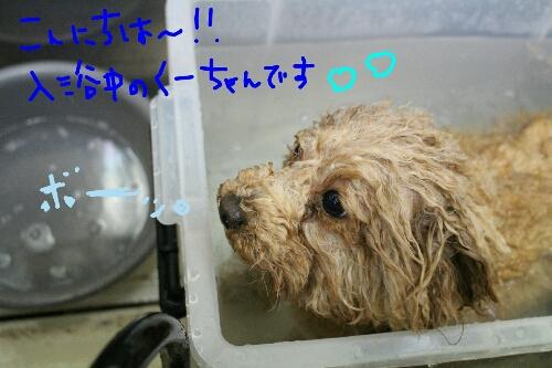 最高♪_b0130018_1485332.jpg