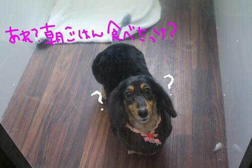 最高♪_b0130018_20364916.jpg