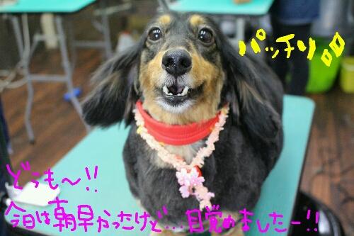 最高♪_b0130018_2036656.jpg