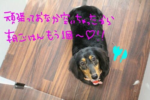 最高♪_b0130018_2037671.jpg