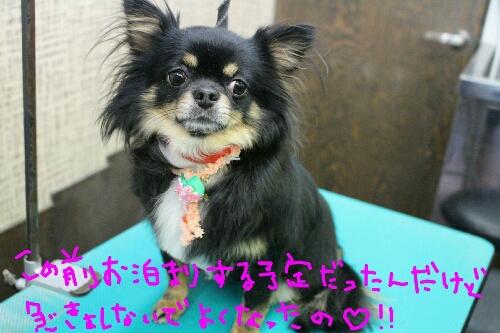 最高♪_b0130018_20391568.jpg
