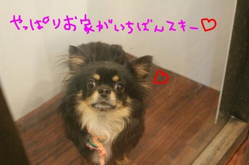 最高♪_b0130018_20393163.jpg