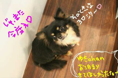 最高♪_b0130018_2039528.jpg