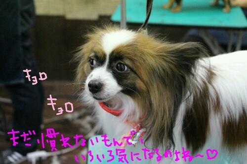 最高♪_b0130018_2042142.jpg