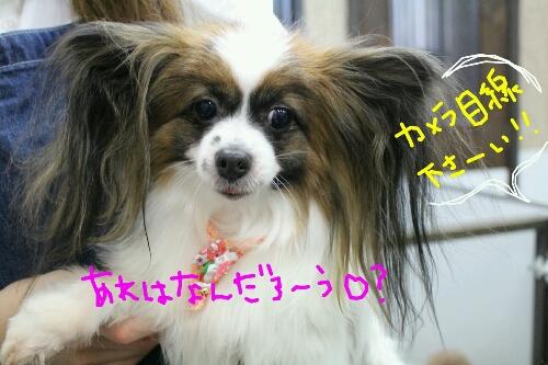 最高♪_b0130018_2042144.jpg