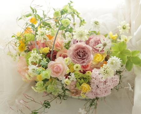 春のギフト _a0042928_167273.jpg