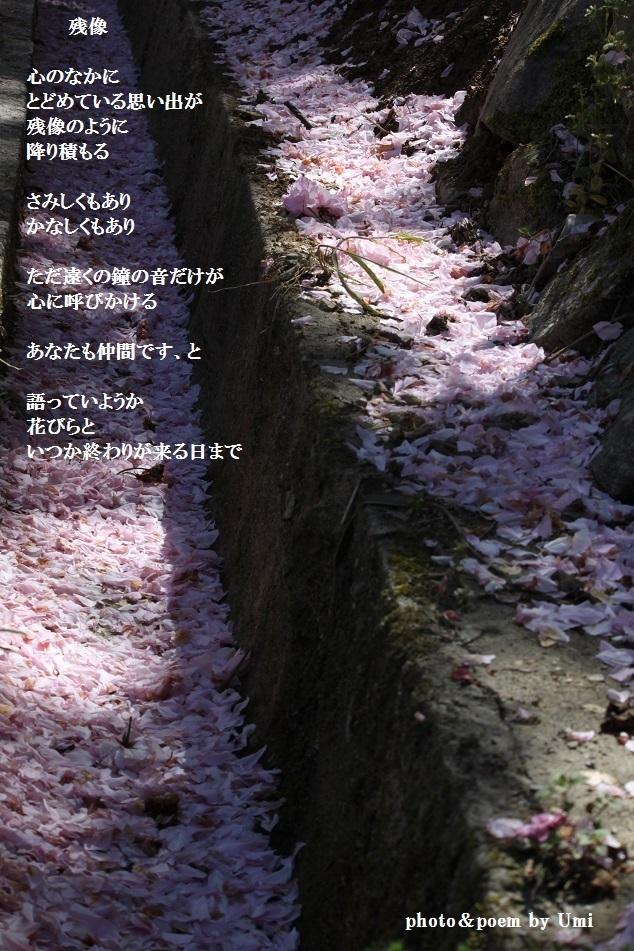 f0351844_10205854.jpg
