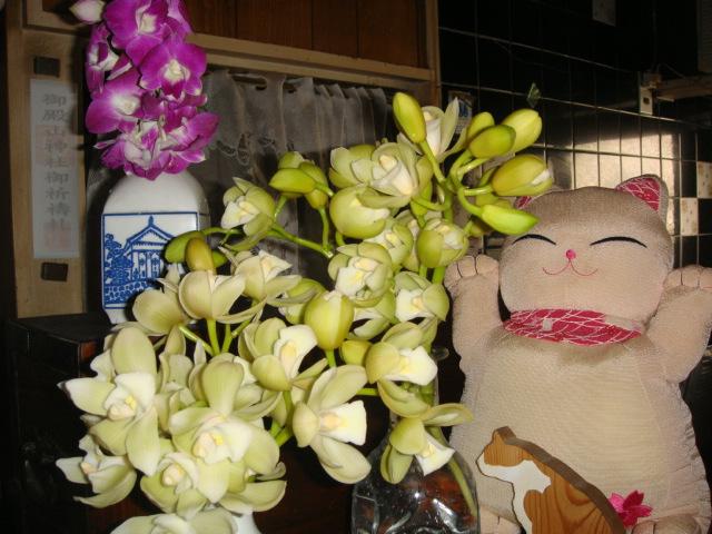 ーーやっぱり、一度!は、北海道!に、行きたいな~!ーーハハハーー。_d0060693_18443333.jpg