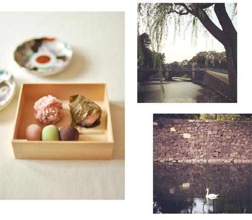 惜しむ桜と、雨後の筍。_d0174704_15474236.jpg