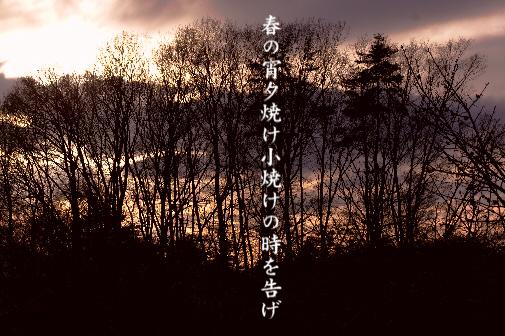 春の宵_e0099713_22472365.jpg