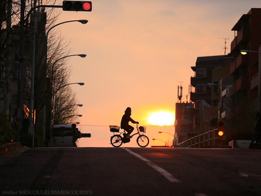 ごちゃごちゃな町も 夕方にはまとまるね_e0194450_1994465.jpg
