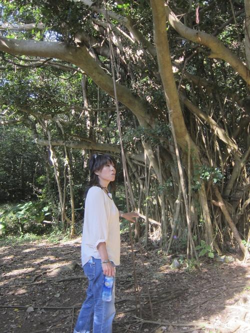 Ending-Northern Okinawa._c0153966_1648048.jpg