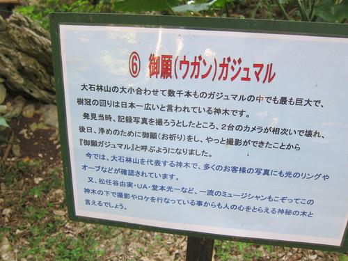 Ending-Northern Okinawa._c0153966_16554158.jpg