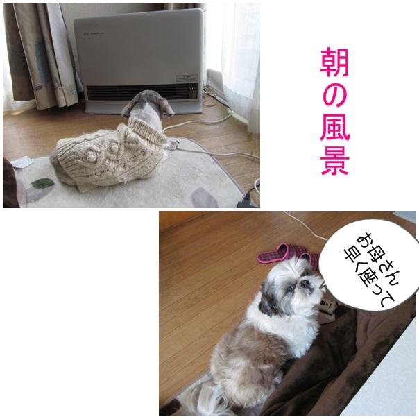 b0124693_2013183.jpg