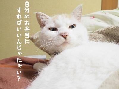 b0042310_19492529.jpg