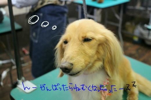 ダイエット!!!_b0130018_00122704.jpg