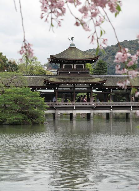 吉野山 千本桜 & 京の遅咲き 桜旅 (2)_d0150720_106468.jpg