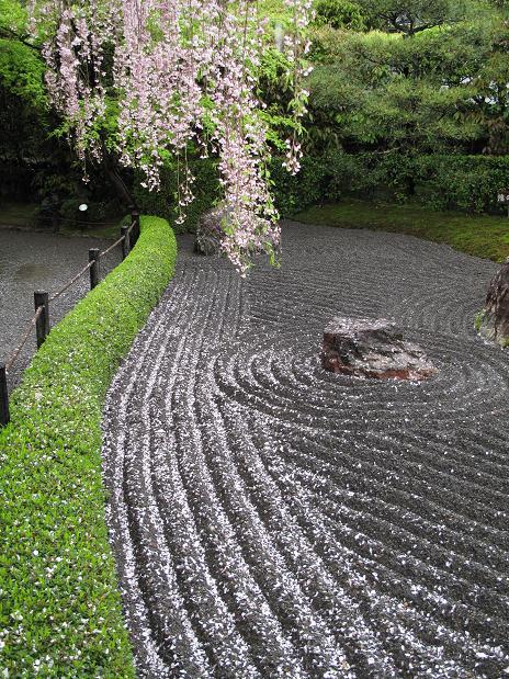 吉野山 千本桜 & 京の遅咲き 桜旅 (2)_d0150720_9532944.jpg