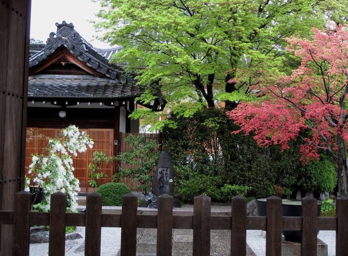 吉野山 千本桜 & 京の遅咲き 桜旅 (2)_d0150720_9544384.jpg