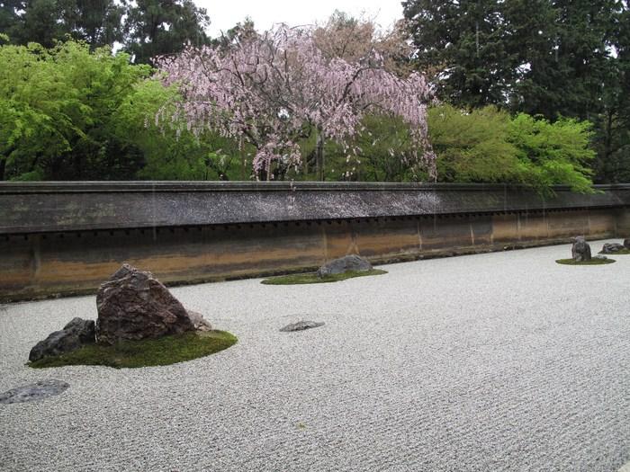 吉野山 千本桜 & 京の遅咲き 桜旅 (2)_d0150720_956331.jpg
