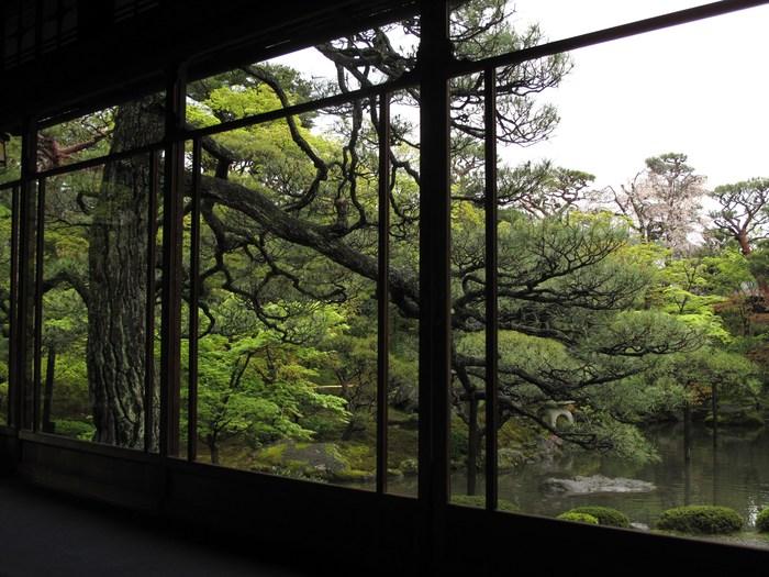吉野山 千本桜 & 京の遅咲き 桜旅 (2)_d0150720_9572137.jpg