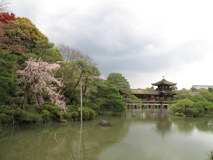 吉野山 千本桜 & 京の遅咲き 桜旅 (2)_d0150720_9583735.jpg
