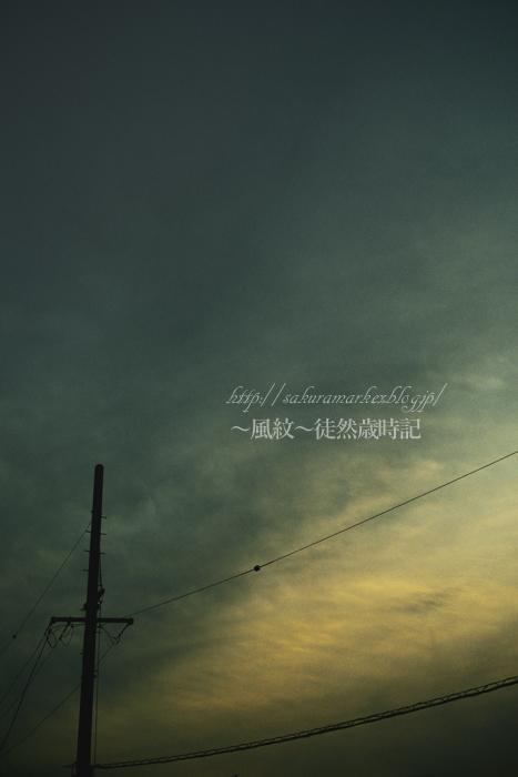 薄暗い夕方。_f0235723_20551279.jpg