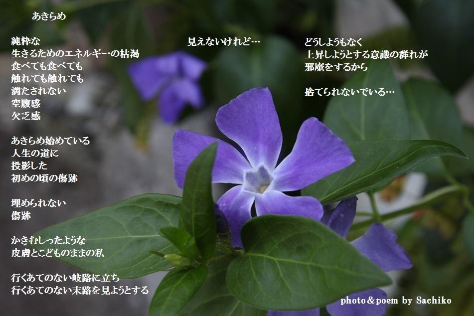 f0351844_13400732.jpg