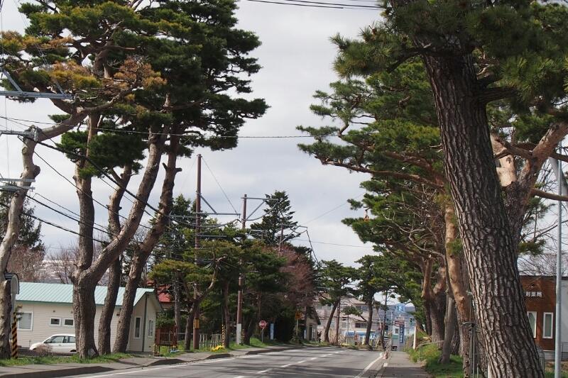 赤松街道_b0106766_2215352.jpg