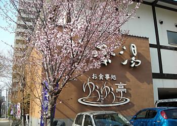 真駒内柏ケ丘遊歩道_f0078286_10572973.jpg