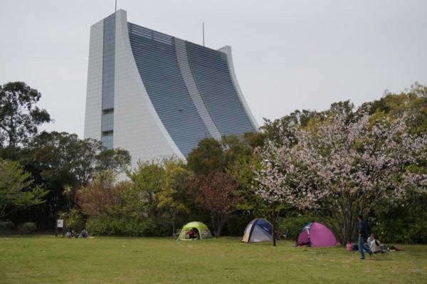 テントの中から花見_f0055131_1243451.jpg