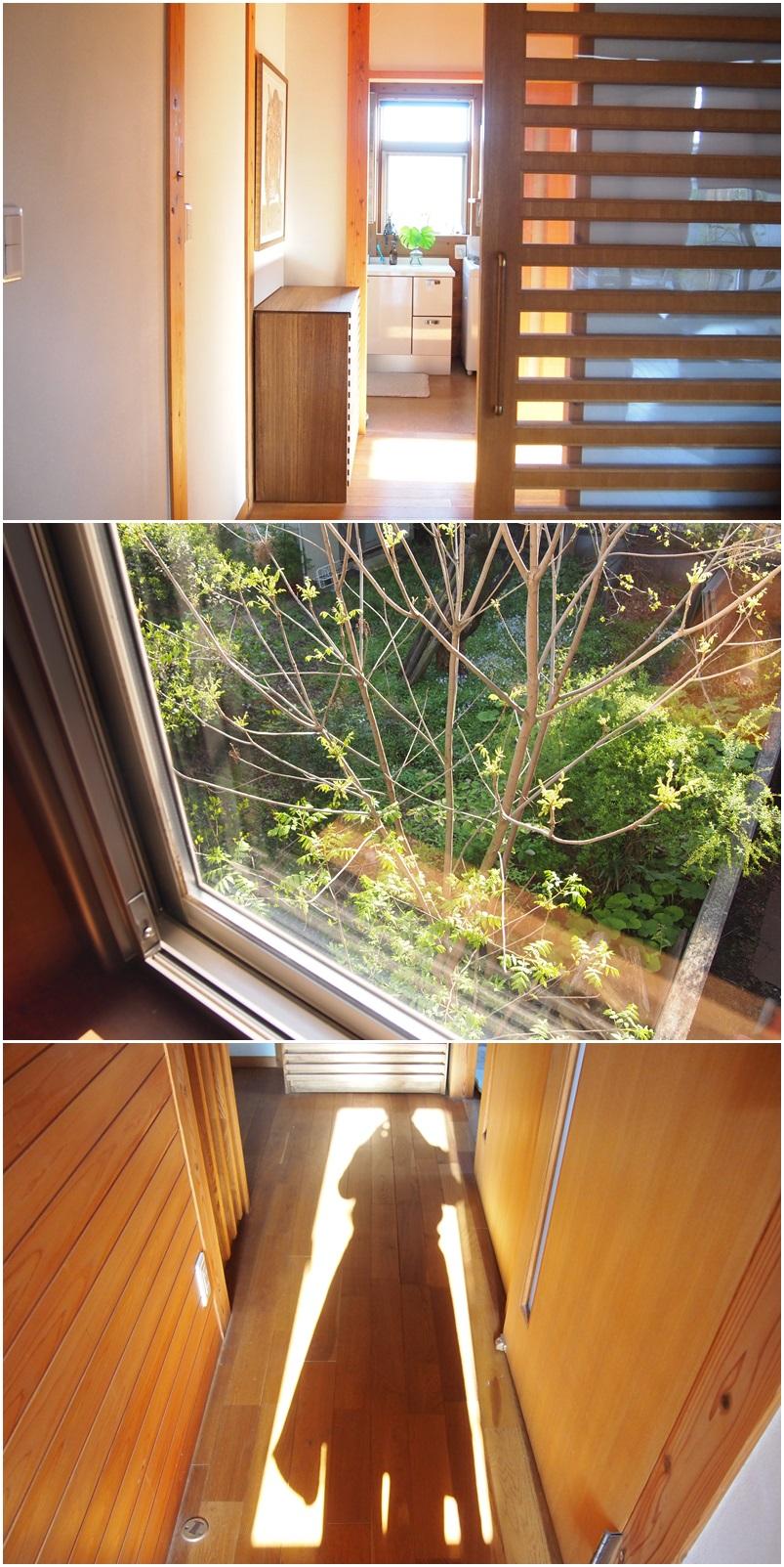 朝陽ってすごい☆_c0152341_11121723.jpg