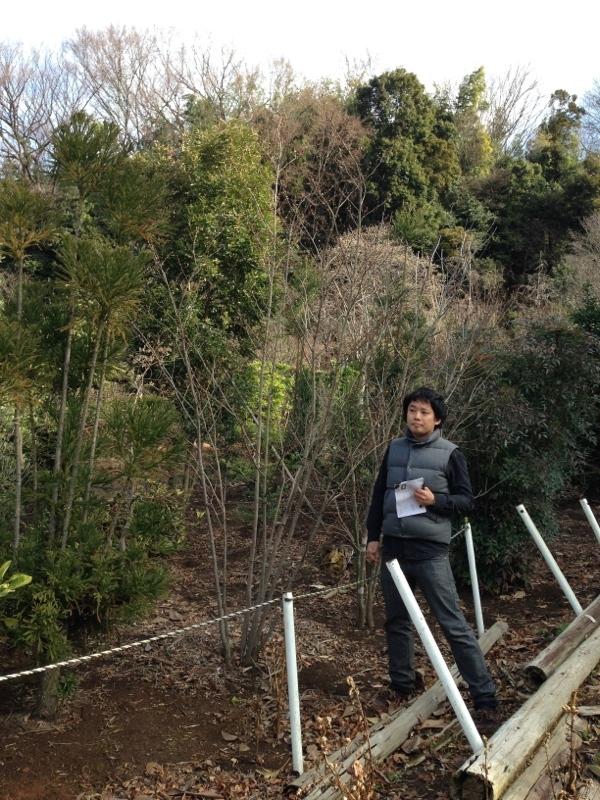 庭造り 「月見台」を造る_f0156448_14310505.jpg