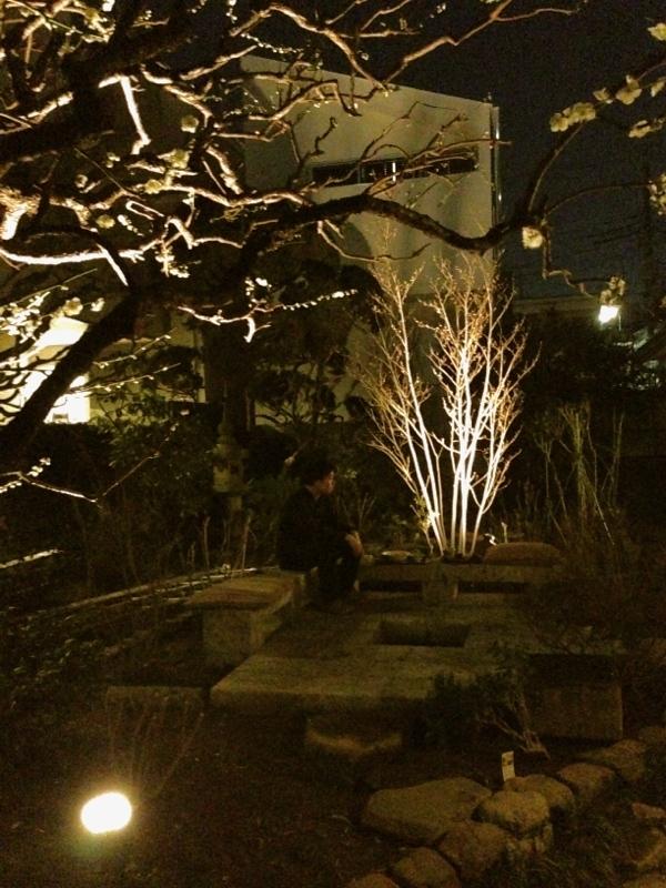 庭造り 「月見台」を造る_f0156448_14310527.jpg