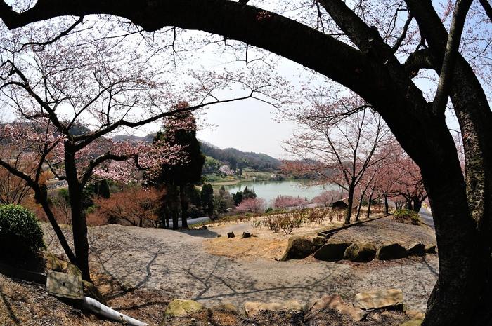 種松山公園_f0224648_16113038.jpg