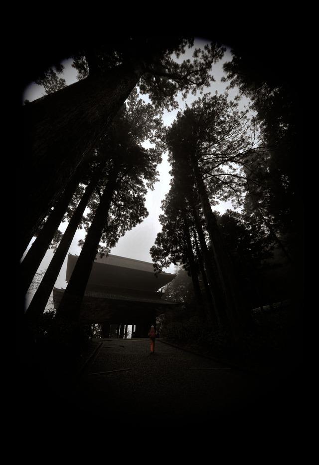 Hello! kouyasan!!_f0303670_1940123.jpg