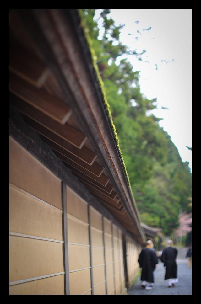 Hello! kouyasan!!_f0303670_19563257.jpg