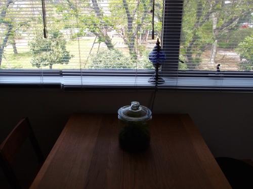 我が家の初テラリウム 完成_c0342582_14274794.jpg