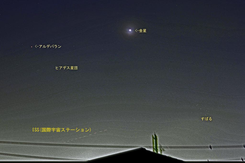 オオアカハラ/蓮池/ホオアカ/アオジ/タシギ/亜種ツグミ/月・金星・ISS_b0024798_13293869.jpg
