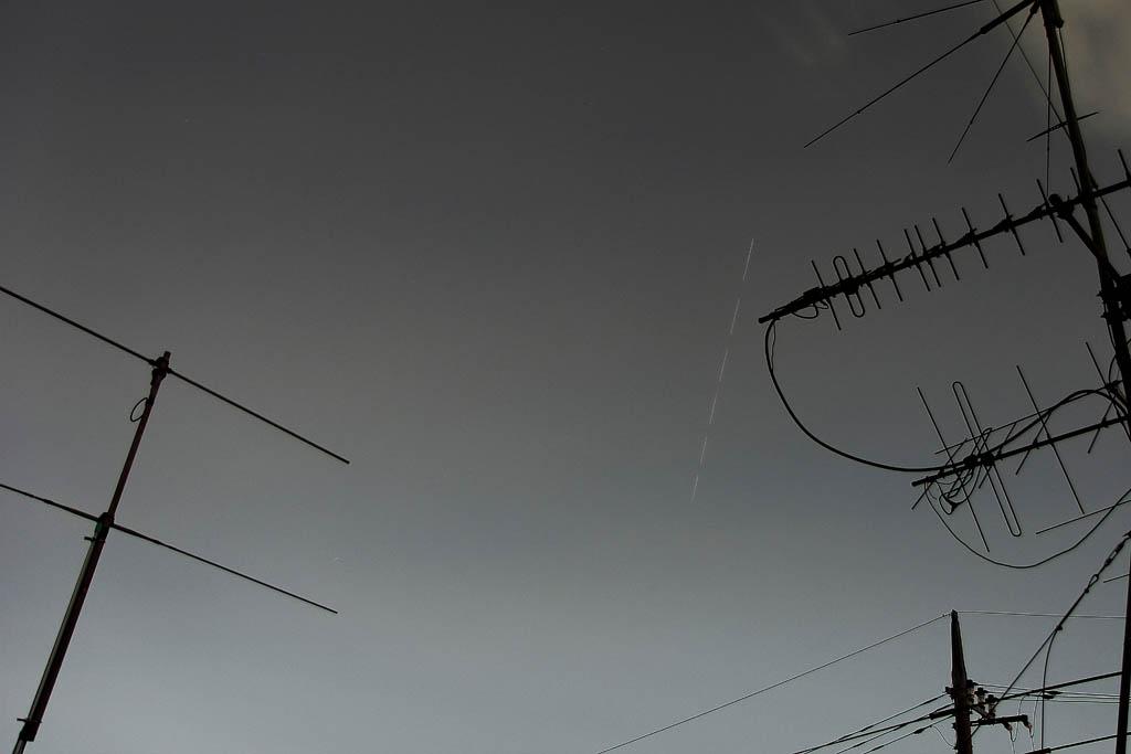 オオアカハラ/蓮池/ホオアカ/アオジ/タシギ/亜種ツグミ/月・金星・ISS_b0024798_13321939.jpg