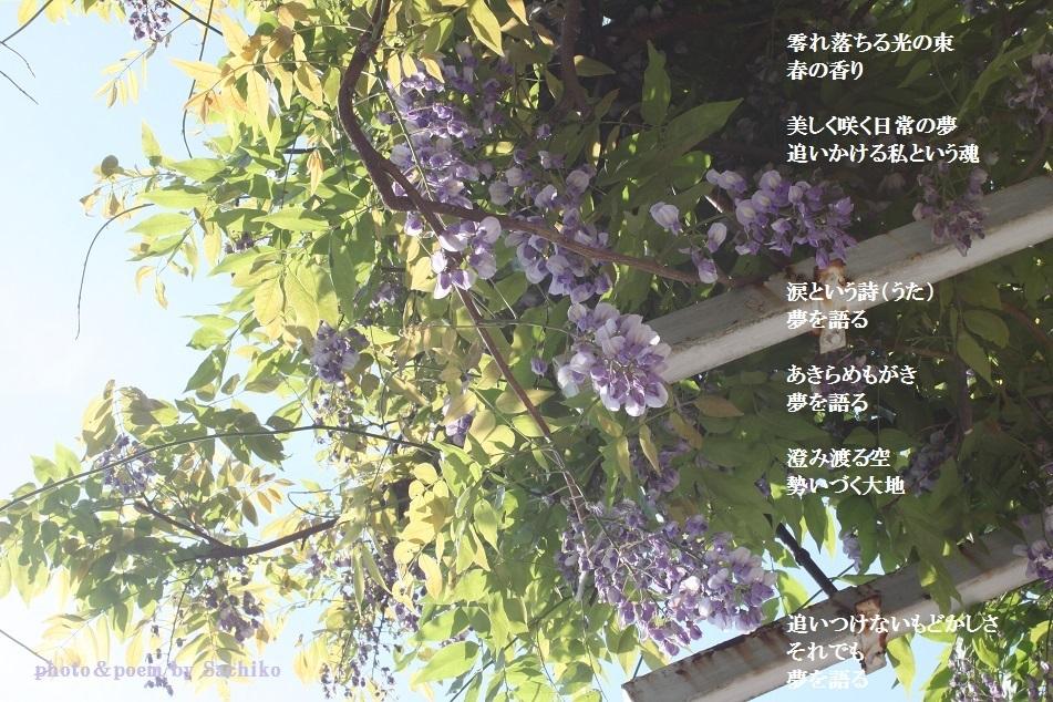 f0351844_14085765.jpg