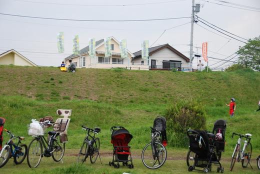 4月25日のきぬたまあそび村 野草の天ぷら_c0120851_002693.jpg