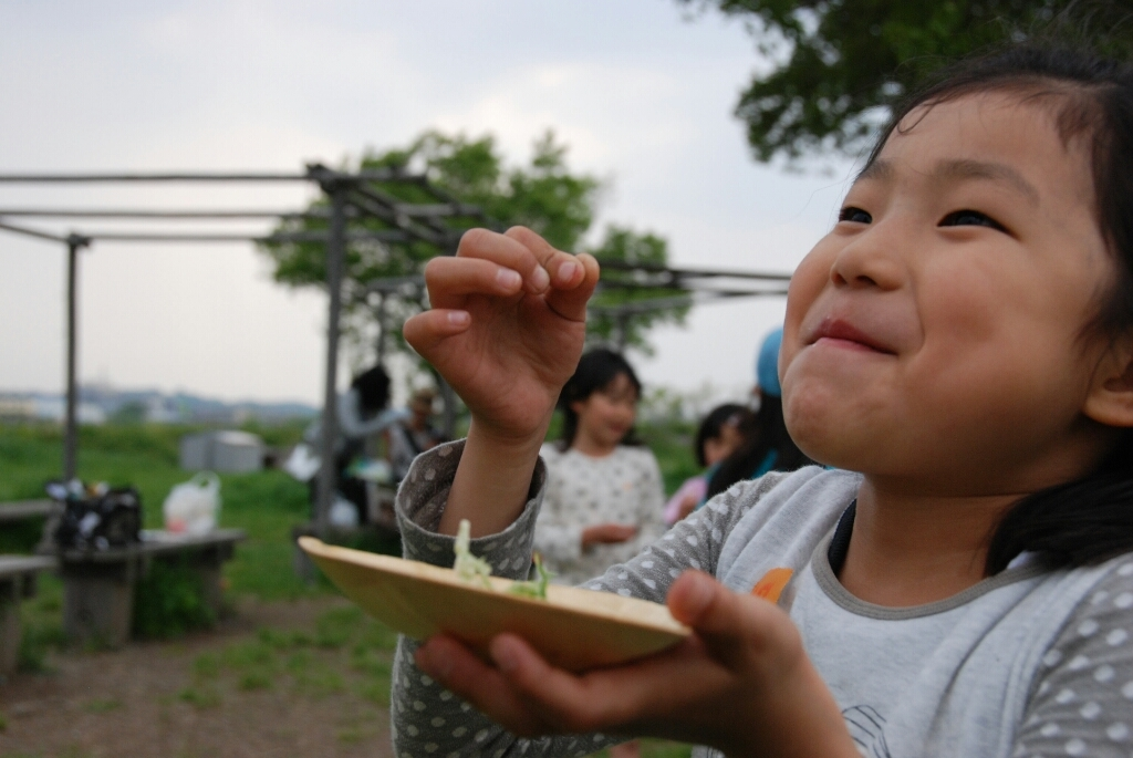 4月25日のきぬたまあそび村 野草の天ぷら_c0120851_23544662.jpg