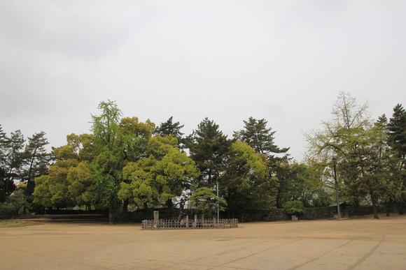 福山城_d0202264_752989.jpg